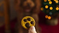 Red Hot Holiday Trends - Bow wow! These super cute, extra-easy treats—featuring paw prints made with melted carob and peanut butter—will be your pup's new favorite.