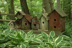 Birdhouse Row - very cute. Cute garden feature, although birds won't like it close to the ground. Could be good for insect houses. Also looks like fairy village.