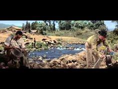 """""""The Sun Also Rises"""" from Ernest Hemingway's """"Fiesta"""" (1957) Tyrone Power, Ava Gardner, Errol Flynn, Mel Ferrer"""