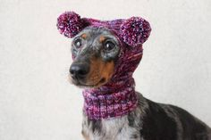 Knitting Pattern Small Dog Hat Dachshund Hat Mini Dachshund