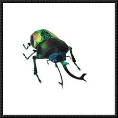 This science paper model is designed by canon papercraft. Scientific name: Phalacrognathus muelleri. Rainbow beetles are found in Australian and New Guinea