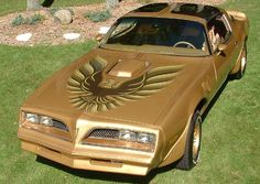 I'd like to try to break the land speed record in this.  1978 Gold Special Edition Trans Am...