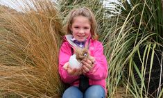 How to get kids out in the wild while staying at home Wild Eyes, Go Outdoors, School Kids, Stay At Home, Cabin Fever, Kiwi, Conservation, Curriculum, Connect