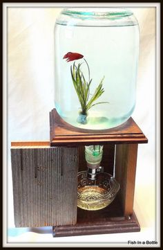 Fish In A Bottle, Self Cleaning Fish Tank-All Dressed Up with Redwood Door. $50.00, via Etsy.