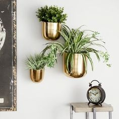 Shop Studio 350 Contemporary Style Large Round Indoor/Outdoor Metallic Gold Metal Wall Planters, Set of - On Sale - Overstock - 28654936 - Silver Gold Walls, Metal Walls, Outdoor Planters, Indoor Outdoor, Succulent Planters, Succulents Garden, Indoor Bar, Cactus Plants, Metal Wall Planters