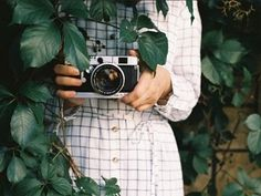photos behind the green | vintage cameras | patterned dresses | simple photos | garden