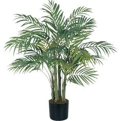 Tuck this leafy palm tree into a bare corner to bring organic appeal to your office or sunroom.  Product: Faux treeC...
