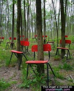 No, these chairs were not found like this after an ill-fated  wedding was cancelled in Poland in 1939.  See how new the chairs are?  It is an artistic photograph by a photographer who assembled the backs of the chairs around the trees for the photo.