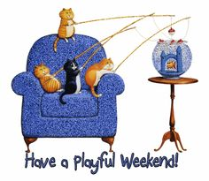 Have a playful weekend