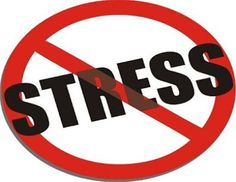 Dealing With Stress, Stress Less, Reduce Stress, Stress Free, Stress Relief, Boost Testosterone, Daily Meditation, 7 Habits, Losing 10 Pounds