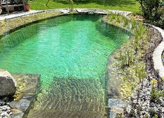 Mini Pool, Natural Swimming Ponds, Swimming Pools, Landscape Architecture, Landscape Design, Plunge Pool, Pool Houses, Outdoor Entertaining, Dream Garden
