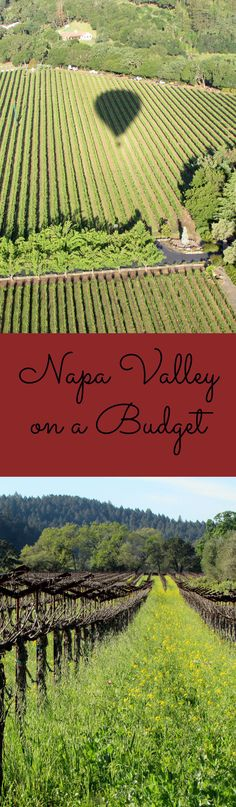 Tips for Wine Tasting in Napa on a Budget #Napa #WineTasting #BudgetTips
