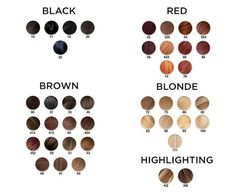 Light To Dark Golden Blonde Hair Color Chart  Radiant Reds
