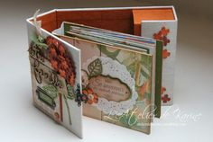 Mini Album et son coffret - Pure Lorelaïl Design 15