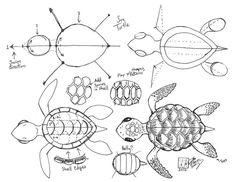 Dessiner une tortue de mer par Diana Huang sur deviantART, si la tête est trop grande, vous avez un bébé... trop petite... vous avez un adulte 1657
