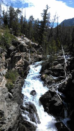 Adams Fall in Grand Lake
