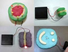 Squishy Circuits! Designed by St. Thomas University to help kids learn about electricity while getting to play with play-dough!
