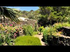 Incantevole ammuso a Pantelleria LOVE SICILY