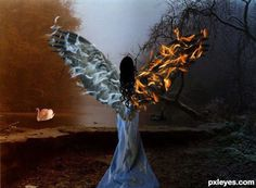 Imagen de angel, fire, and wings