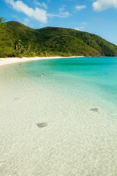 Watch the sting rays swim around. White Bay Beach, Guana Island, British Virgin Islands.
