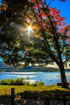 Fall in Pennsylvania - Beauty in the Changing by Sarah Little