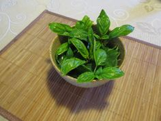 You heard right! You can regrow these common veggies you probably already have at your house. Think about how many times you've cooked these vegetables and then threw it right away without thinking, whoa I can totally regrow this thing and save a couple bucks. Well, you can start regrowing them now. Here are the…