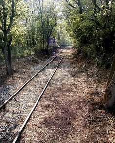 Train Tracks ... Middletown, PA