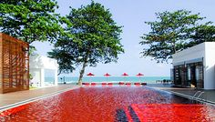 Amazing red pool at The Library, Koh Samui, Gulf of Thailand. Recommend the Smart Studio suites, as the elevated position provide ocean glimpses and more natural light.