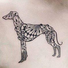 Tatto galgo