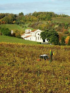 The church of Bouteville in the vineyards of #cognac, France. Seen during a #winetour