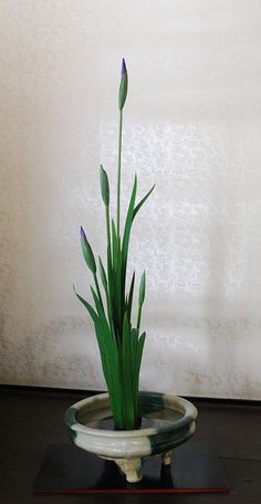 Decorating Japanese Historical Lodging  w/ Ikebana by Mai Wakisaka Photography, via Flickr