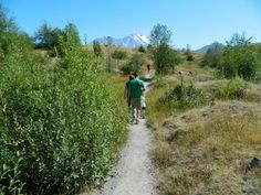 Mt. St. Helens' Hummocks Trail Adventures Part 3 | The Nature Tour