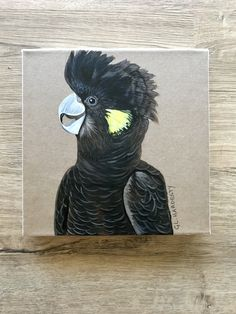 Yellow tailed black Cockatoo painting, mixed media on mini canvas.