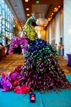 Georgeous Peacock orchid arrangement