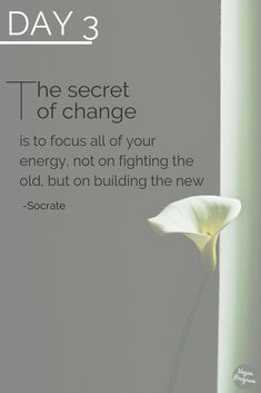 No Alcohol Challenge The secret to change is to focus all your energy not on fighting the old but on building the new you. Drug Addiction Recovery, Addiction Quotes, Happy Wife, Sober Living, Clean Living, Weight Loss Journal, New Year New You, Sober Life, Drug Free