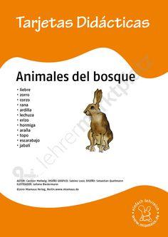 Bildkarten Spanisch: animales del bosque - Seite 1