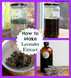 How To Make Lavender Extract with idea on what to use it in.