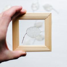 Make these see through frames with pressed flowers in no time.