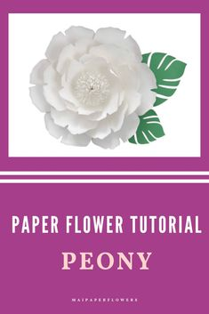 Are you looking for paper flower templates printable PDF? Don't miss out this printable template, it is great for giant paper flowers projects and easy to make! Click through for more details! #paperflowertemplate #paperflowertemplateprintable #paperflowerprintable #paperflowertemplatepdf #paperflowerprintabletemplate #giantpaperflowers #paperflowereasy