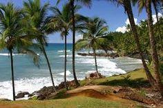 Brasilian beaches