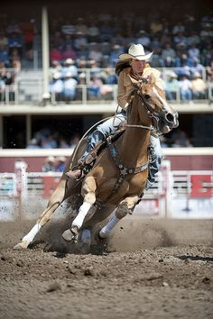 Reining barrel racing rodeo western ranch cowboy cowgirl farm show performance equine horse equestrian pony quarter charro vaquero gymkhana sliding stop cutting cowhorse prca