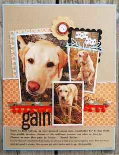 I need to scrapbook my pet pics sometime - this is a fun layout