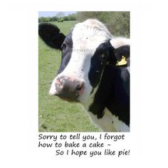 Items similar to A Hilarious Funny Card For Birthdays or animal lover Black and White Cow - Cant Bake a Cake so I Made You a Pie - Farm animals with food on Etsy Birthday Message For Bestfriend, Birthday Wishes For Her, Birthday Quotes For Daughter, Mum Birthday Gift, 50th Birthday Cards, Farm Birthday, Birthday Messages, Birthday Gifts For Girls, Birthday Greeting Cards