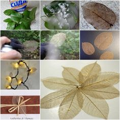 Recycle of Skeleton Leaves for Home Decor....Easy DIY Recycling Projects. Its Time to Empty Your Recycle Bin. Part II #Diycrafts