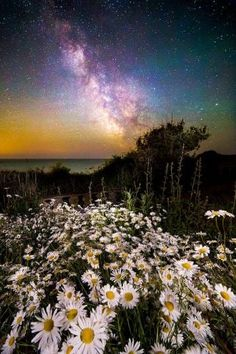 Mesmerising night skies captured over the Isle of Wight, in pictures - Telegraph