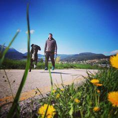 #quattro #passi in #compagnia del #amicoaquattrozampe #trekking #sole #primavera #falchettolovesanimal #falchettolovers #fiori #visittrentino @trentinodavivere @valdinon #nelbludipintodiblu #blu #cielo #infinito