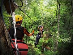 See Wisconsin's Fall Colors | Travel Wisconsin - Lake Geneva Canopy Tours