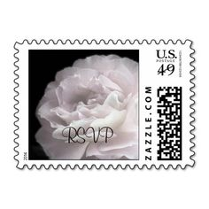 Pale Pink Rose Petals RSVP Postage Stamp - This photograph of an ultra pale pink rose on a black background is a simple yet elegant RSVP postage stamp. There are matching invitations, postcards, thank you notes and other sentiments in this pattern. Be sure to select the correct postage amount for what you are mailing. Original photograph by Alan & Marcia Socolik. All Rights Reserved © 2014 Alan & Marcia Socolik #RSVP #Wedding #Anniversary #Birthday