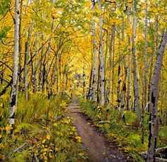"""""""I had a solo art show in a Denver art gallery in May and June. One of the gallery employees told me that one visitor took a lot of time viewing my work and really liked the exhibit, but one painting was her favorite, 'Kenosha to Breckenridge Trail.'"""