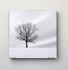 Single Tree Black and White Art Snow  Nature by hockmanphotography, $85.00